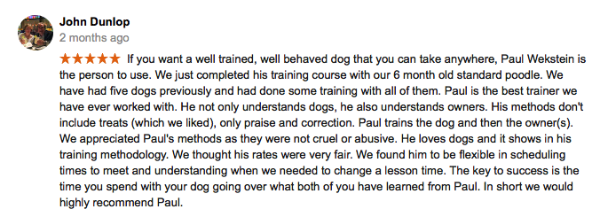 Mountain_canine_college_dog_training_review3