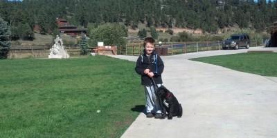 puppy training in denver